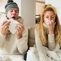 IV. 3. A gombák szerepe az influenza megelőzésében