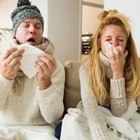 A gombák szerepe az influenza megelőzésében