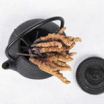 Kínai hernyógomba (Cordyceps sinensis) a vitalitás és a termékenység gombája