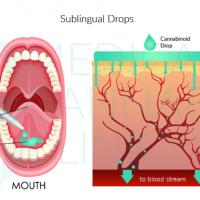Miért hatékonyabb a szájnyálkahártyán keresztül történő felszívódás