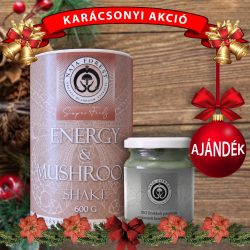 Energy & Mushroom Shake karácsonyi akció