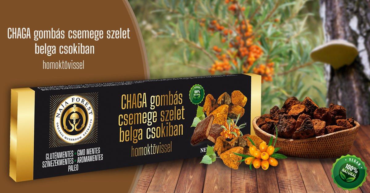 Homoktövises CHAGA gombás gyümölcs szelet étcsokoládéval mártva
